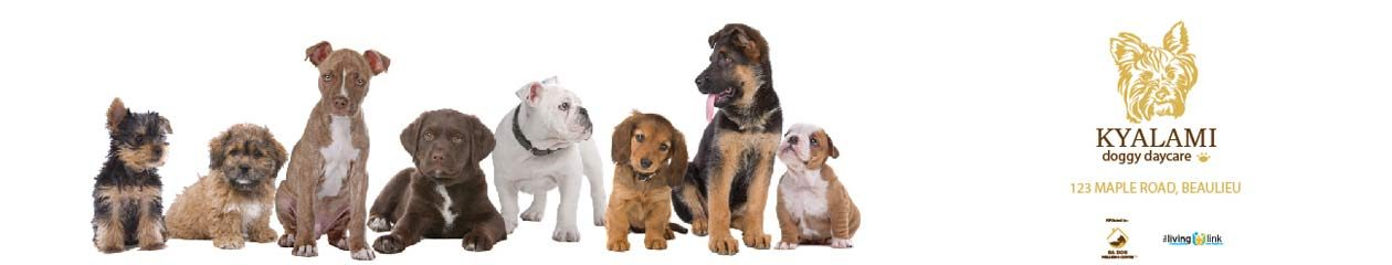 Kyalami Doggy Daycare